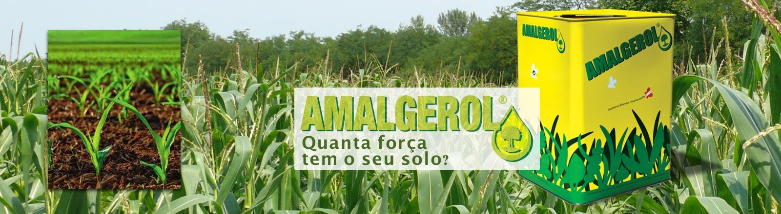 Amalgerol